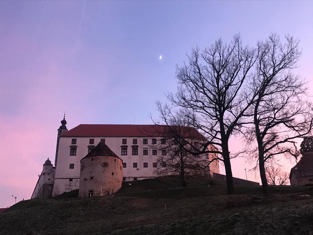 Il castello di Ptuj in Slovenia in cima alla collina