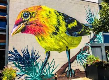 street art a denver colorado usa alexandrea pangburn