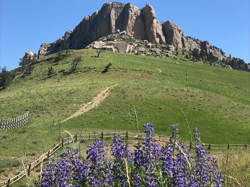 monti del bighorn wyoming ricchi di miniere
